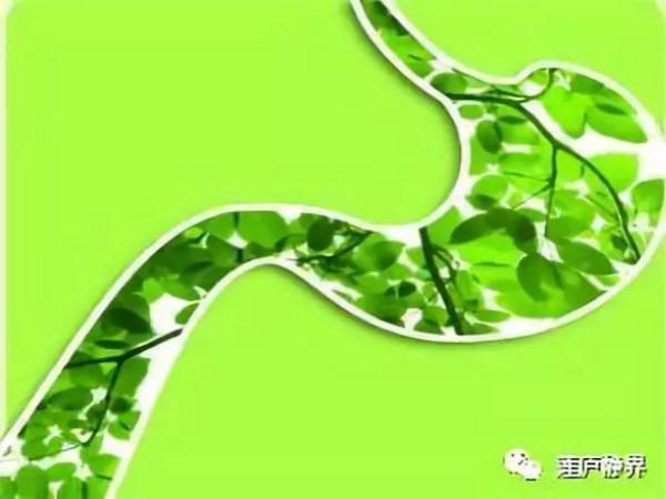 图片2_meitu_9.jpg